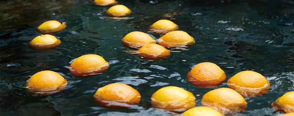 季節の変わり湯「果実湯」