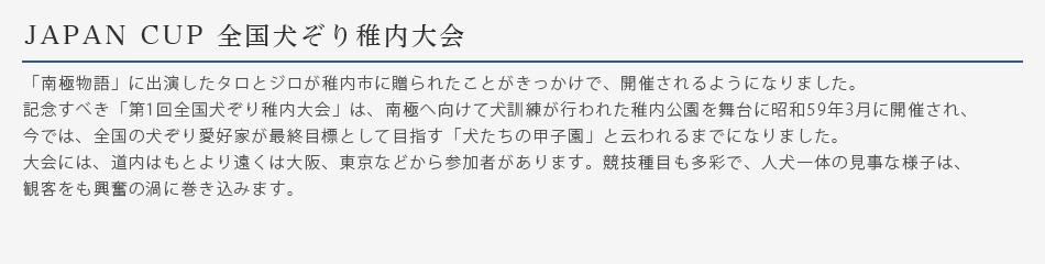 JAPANCUP全国犬ぞり稚内大会